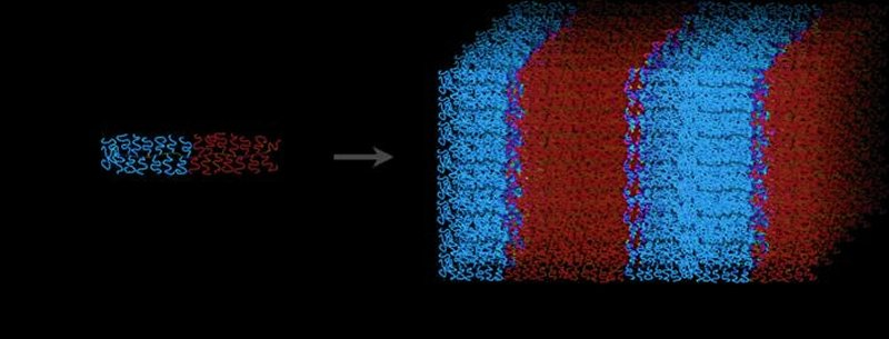 polymers form membranes with large nanopores