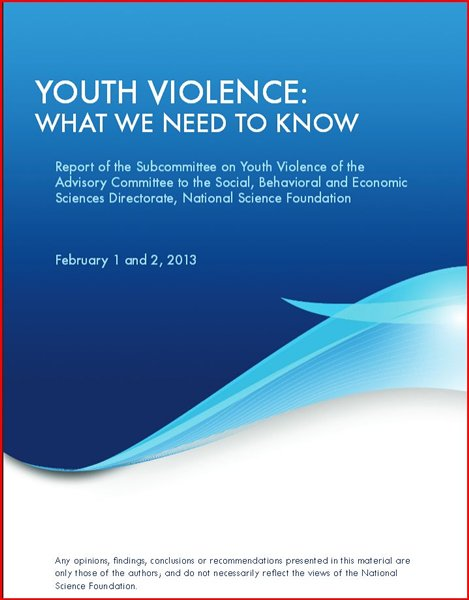 cover of nsf report on youth violence