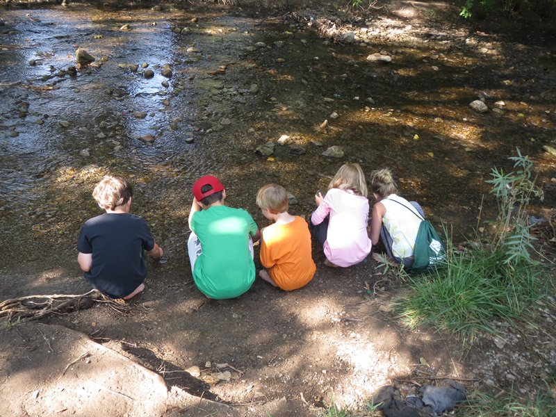 young students take stream samples during an outdoor learning session sponsored by the natural history museum of utah