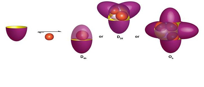 nanoscale containers form when bowl-shaped molecules assemble around guest molecules depending on their size and number
